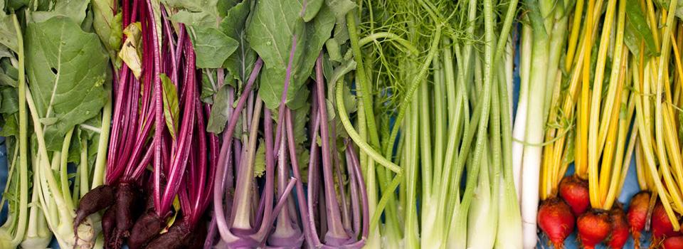 BK-groente-in-kist1