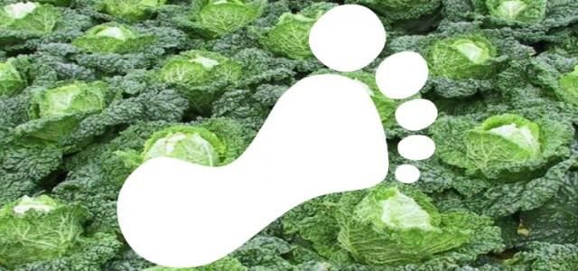 foodprint in kolen